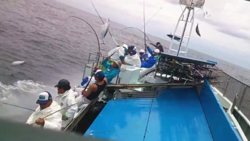 流水化钓鱼太可怕!10位钓鱼人分分钟钓获几百条大鱼!