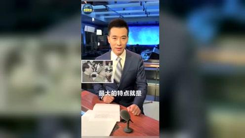 央视主播为阿中哥录应援视频