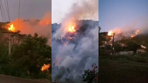 花果山大火!2000亩山地突然着火,400名消防员赶赴现场救火