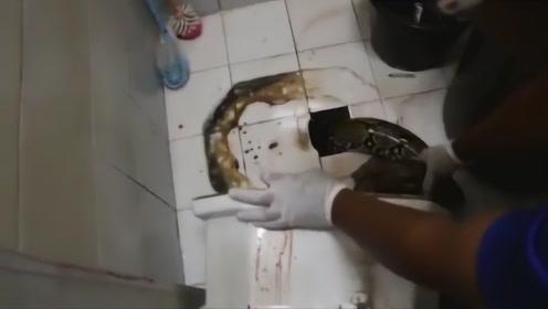 男子上厕所突然被东西咬住,低头看见这东西,吓得大叫妻子报警!