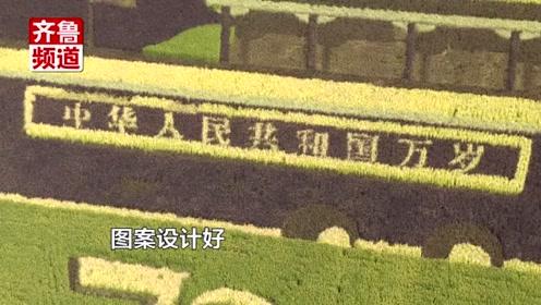 """太壮观!山东东营这幅画将""""天安门""""搬到了稻田里"""