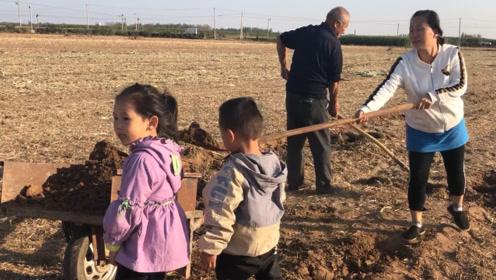 农村媳妇和公婆干农活,无意间发现了啥野物?足足能有二斤重!