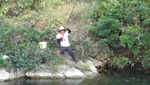 农村黑潭里的鱼都饿疯了,小伙野钓甩竿不停,收获太棒了