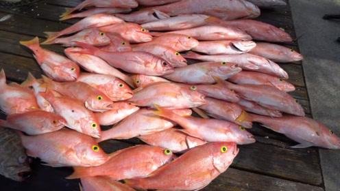 看看人家的鱼情,感觉这些年的鱼白钓了,一竿都钓几条鱼