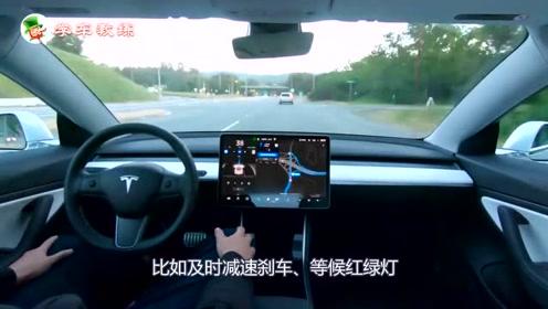 特斯拉无人驾驶真牛,自动跟停一气呵成,司机只是一个挂件