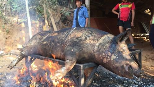 泰国人太霸气了,直接烤一整头200斤的大猪,烤到一半:太浪费了