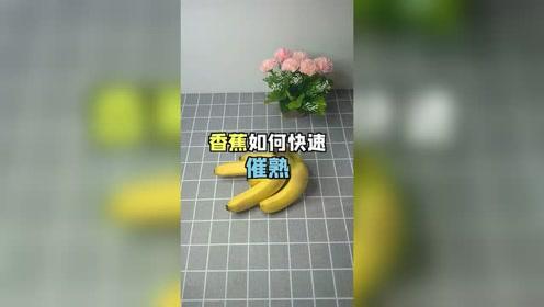老公不会挑选香蕉,买回来还是生的,还好我有小妙招催熟
