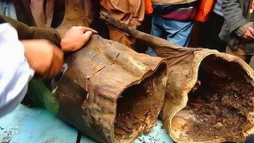 四川的这个部落从不结婚,家家吃臭猪肉,最久的放了30年!