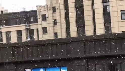 一秒入冬 吉林长春迎来第一场雪 大片雪花纷纷落下