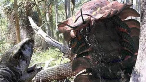 史前巨虫时代多可怕?仅蜈蚣就有5米长,轻易吃掉一只小狗