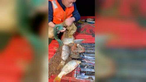撒网捞鱼非常好玩,一网下去多少人能钓一天,一天未必也能做到