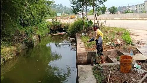 河里的鱼都饿疯了,农村大爷拿竹竿,狂甩不停,直接飞钩上货