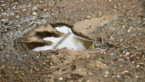 浙江兰溪发现一亿年前恐龙脚印,村民:不知道是啥,拿石头填了
