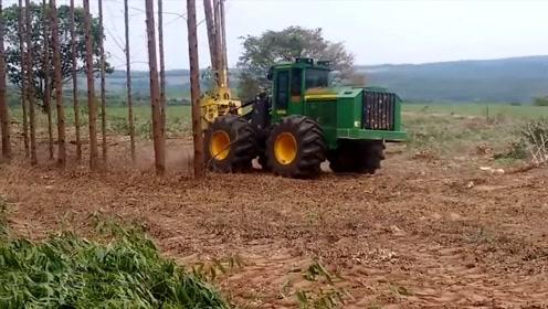 农民买不起伐树机,于是将拖拉机改造成伐树机,看看效果怎么样?