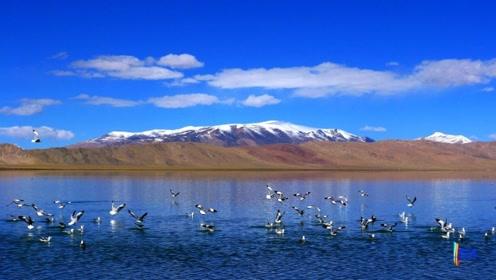 这个湖泊将超越青海湖,成为中国第一大湖,造成的原因让人叹息