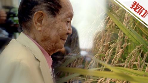 90岁袁隆平:杂交水稻产量的上限是无止境的
