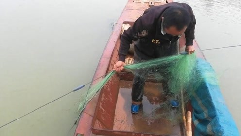 桂阳渔民:几百米渔网一天就这么多鱼,到底是该继续还是该去打工