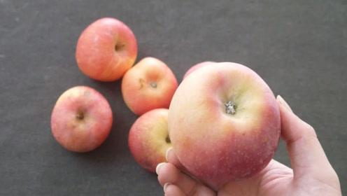 你家还买苹果吃吗?幸亏苹果种植大户无意说漏嘴,涨知识了