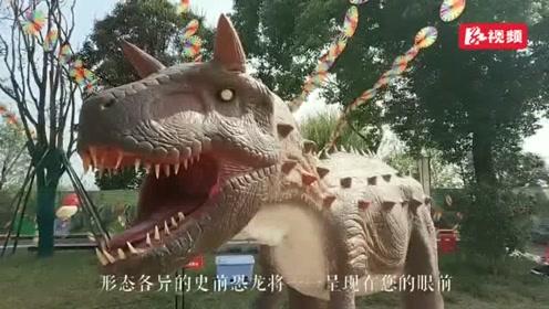 """湘潭窑湾本周末与""""龙""""有约"""