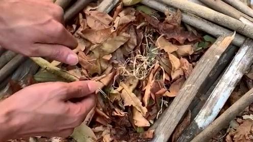 镁棒,要用火绒就是絮状物才能引燃,树叶不好点燃