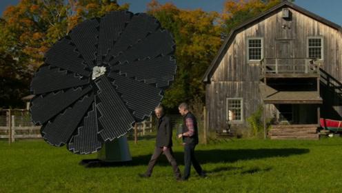 国外发明太阳能花,吸收转电能,1年发电6200度,有它能省多少电?