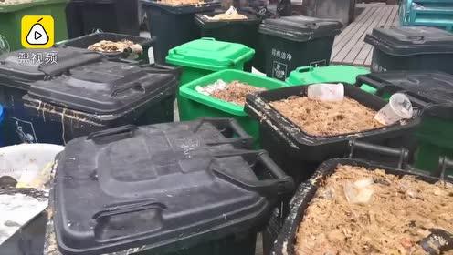隔屏臭晕!高校餐厅堆百桶泔水无人回收,学生诉苦影响食欲
