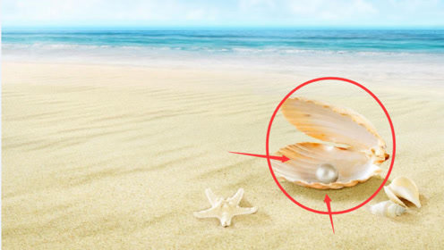 """海边""""巨型珍珠""""遭疯抢,渔民赶忙阻止:快放下,这不是珍珠!"""