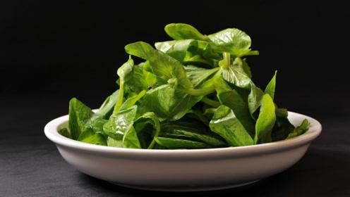 百岁夫妻长寿食谱,这4样菜清肠养胃不生病