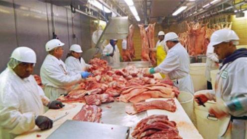 90天进口132.6万吨!猪肉进口量创新高,北美对华供应大涨27倍!