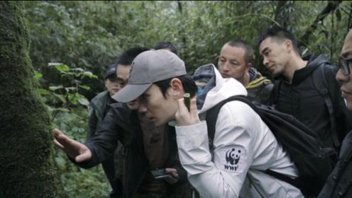 WWF x 朱一龙:大熊猫寻踪之旅