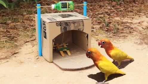 捕鸟器的简易制作,你学会了吗