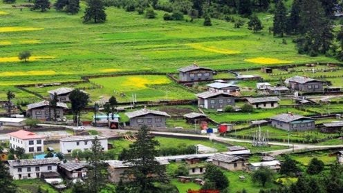 我国最安逸的村子,村里夜晚都不会关门,村民的生活质量也非常高