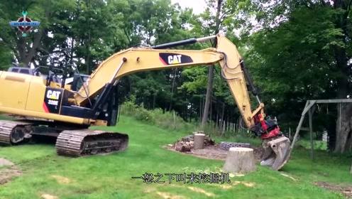 老外被大树根困扰多年,一怒之下叫来挖掘机,结果反倒吃大亏
