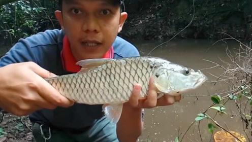 钓鱼:这么好的鱼,还是把它放生了