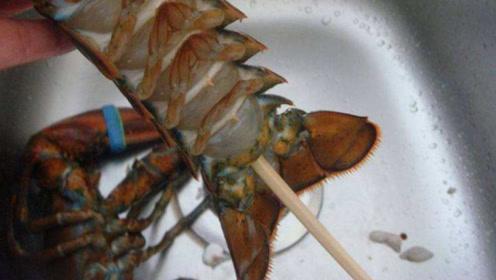 大厨们在做龙虾前,为什么都要拿筷子从下面戳进去?看完笑了!