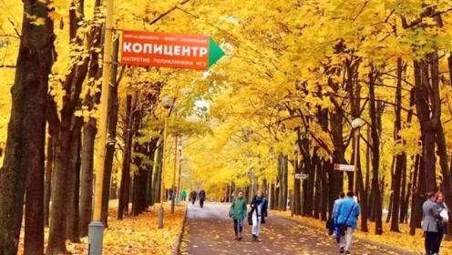 此国的秋天,像油画一样漂亮,堪比加拿大