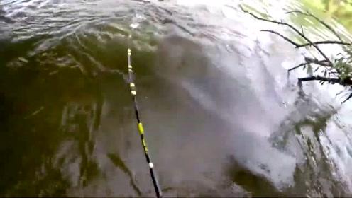 钓鱼:钓到大鲶鱼,看清面貌后,吓得连忙后退