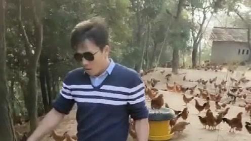 这年头,养鸡的养鸭的还有养猪的,都这么嘚瑟,也都有资本嘚瑟!
