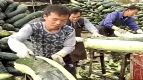三分钱一斤的蔬菜,商家还不愿要,农民只能深加工后制成咸菜了!