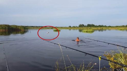 男子海边钓鱼,发现不远处一只天鹅在挣扎,走近才发现不对劲