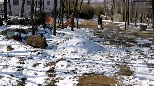 「泪奔」老家下雪了,父亲去挑水吃~
