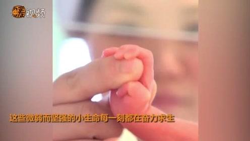 加油!新生儿ICU里的小宝宝们紧紧抓住护士姐姐的手:我要加油