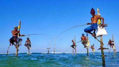 """世界上最""""牛""""的钓鱼方式,大鱼自动上钩,而且不用鱼饵"""