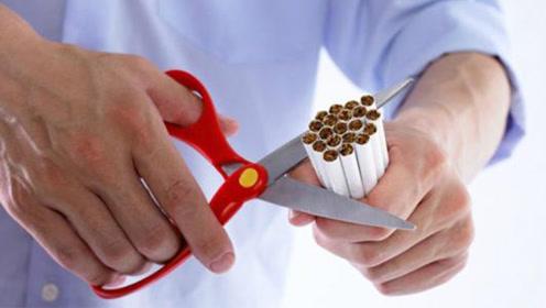 戒烟成功的那些人,最后都怎样了?专家终于说了实话