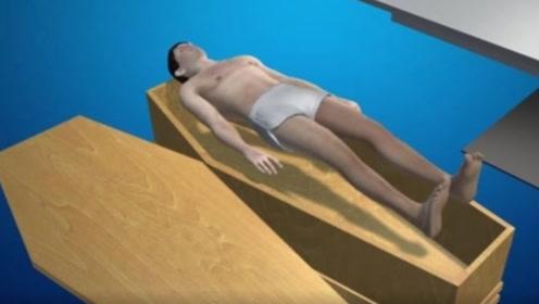 冰葬即将取代火葬?尸体在低温下粉碎,3D技术展示全过程