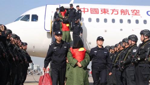 震撼!208名诈骗犯被从菲律宾包机押解回国,涉案金额上亿