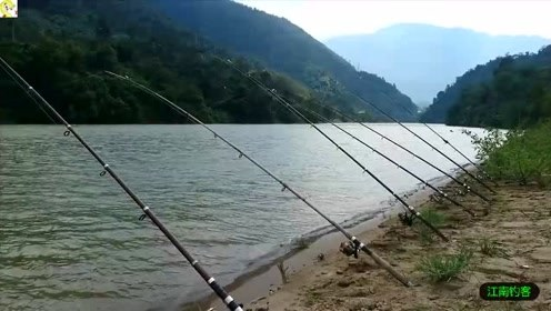 河边搭上一个雨棚,再撒下十来竿钓,这才是钓鱼的好地方