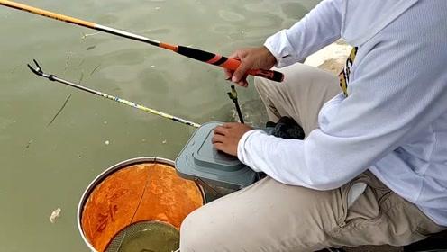 野河钓翘嘴,这钓鱼手法真专业
