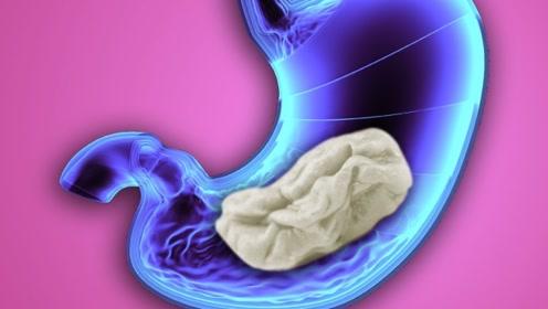 吞下口香糖后,人类身体究竟会发生什么变化?解开了我20年的困惑