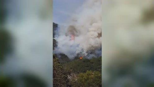 景德镇瑶里风景区突发山火 现场火焰蹿数米高场面吓人